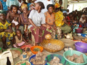 """The Madiho - or """"Perserverance"""" - Women's Farming Group showcase their productivity in Bongor, Sierra Leone. Photo: J. Baxter"""