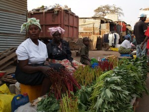 Many diets in Africa contain a plethora of nutritious leafy greens, like these in a market in The Gambia. Photo credit: Joan Baxter