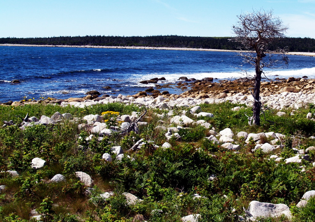 The magnificent ocean vista on Nova Scotia's Eastern Shore
